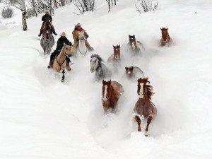 cowboy-christmas-300x225